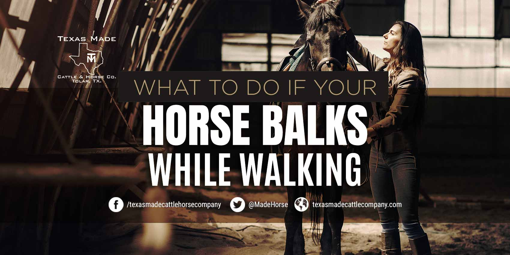 What To Do If Your Horse Balks While Walking