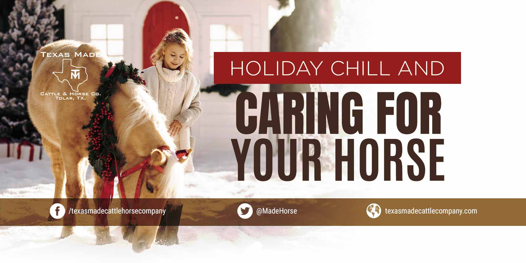 Holiday Chill and Caring For Your Horse