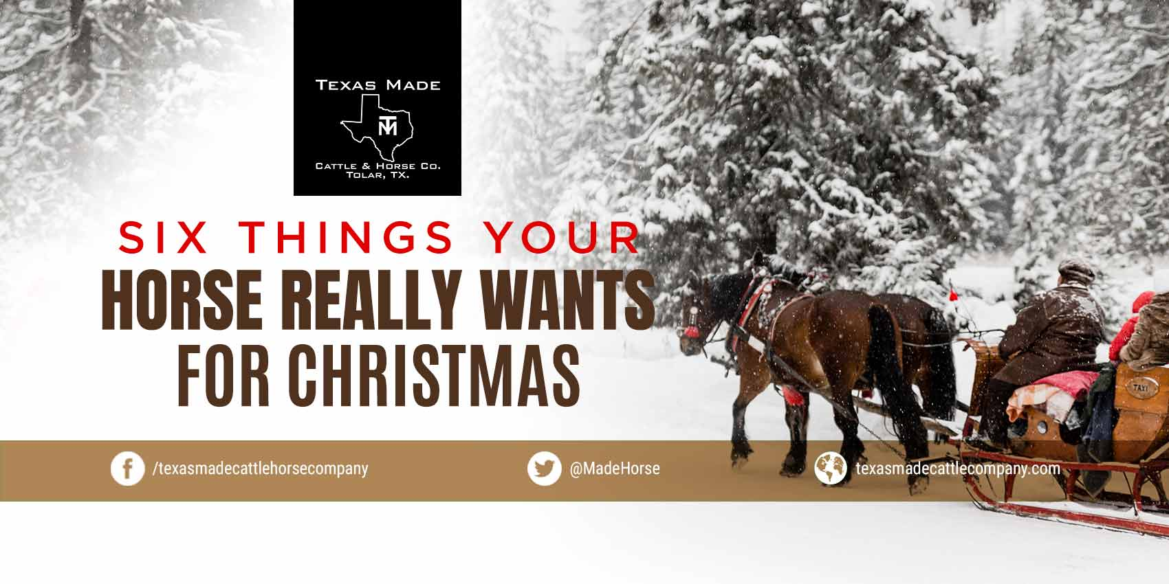 Six Things Your Horse Really Wants for Christmas