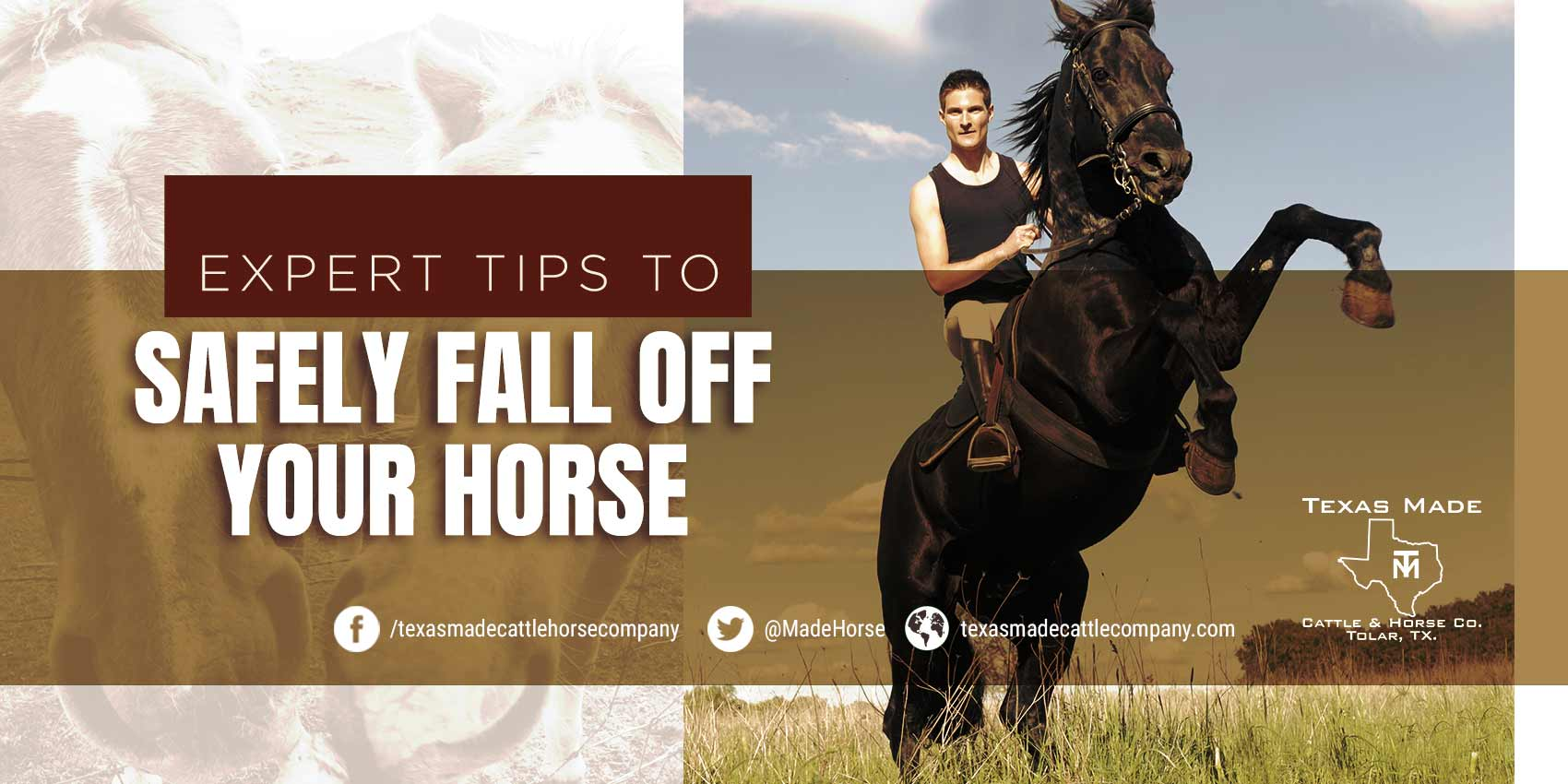 Expert Tips to Safely Fall Off Your Horse
