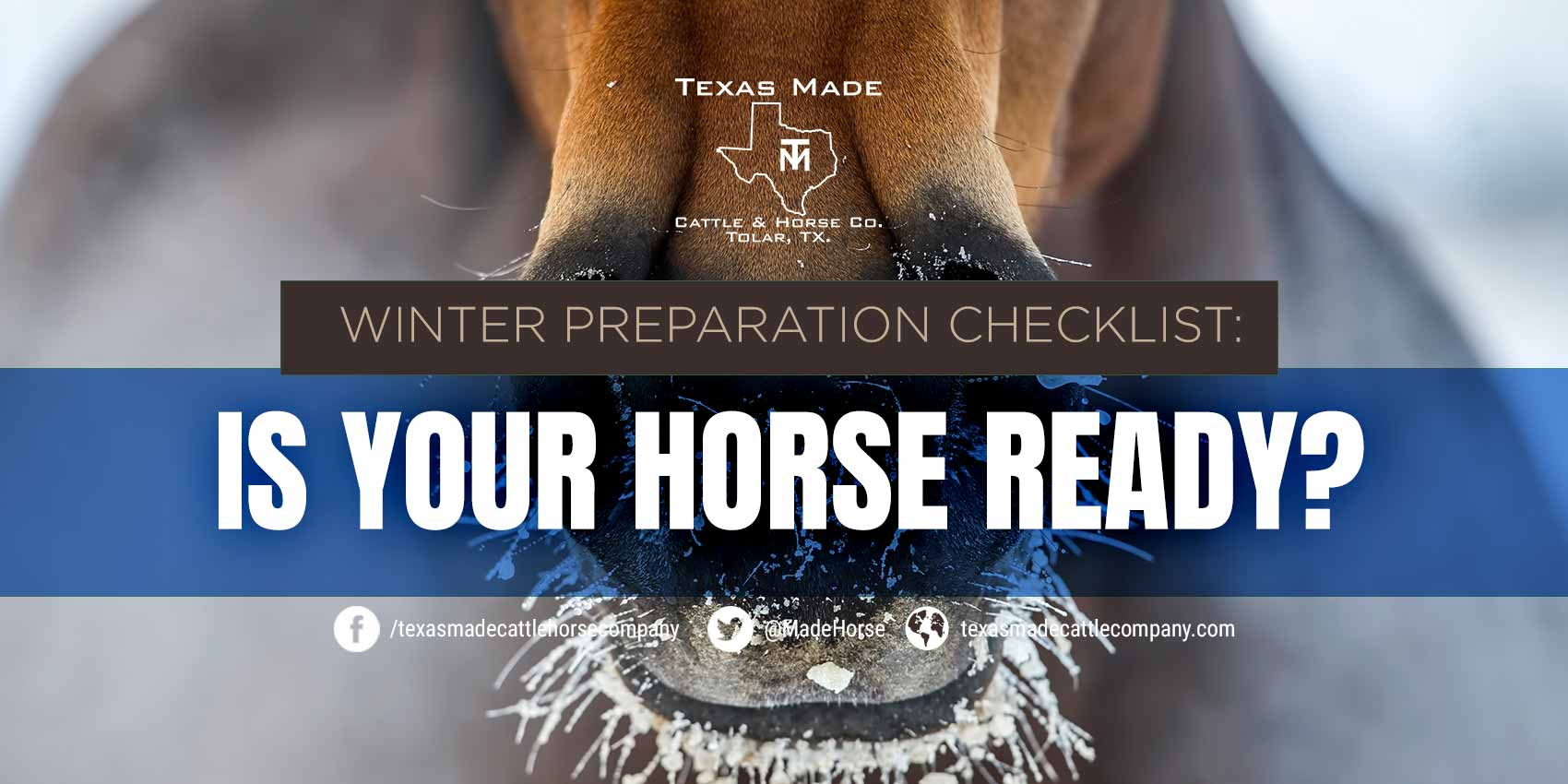 Winter Preparation Checklist: Is Your Horse Ready?